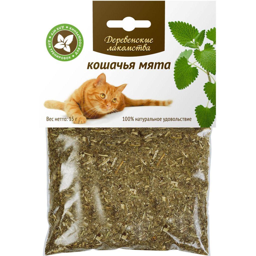 Ну как не побаловать лакомством любимую кошку? Фото images.obi.ru