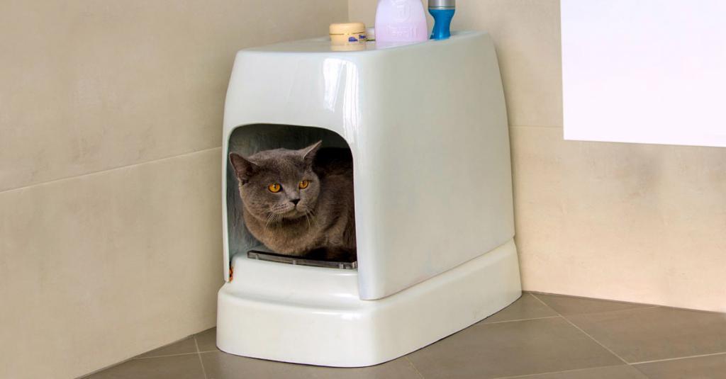 Туалет домик для кошек.jpg