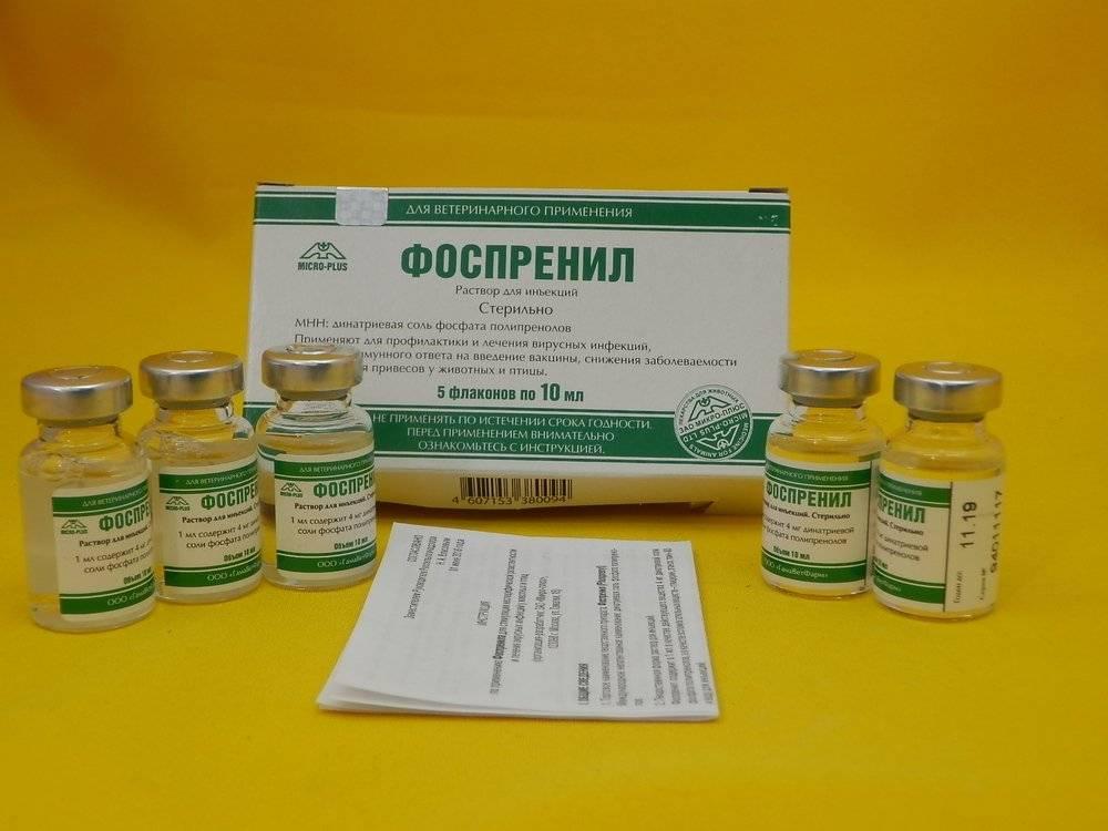 Флаконы с лекарством упакованы в картонные боксы по 5 штук и снабжены листком с инструкцией